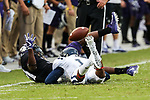 TCU Horned Frogs running back Delenis Garrett (31) and Jackson State Tigers defensive back Brandon Maiden (1) in action during the game between the Jackson State Tigers and the TCU Horned Frogs at the Amon G. Carter Stadium in Fort Worth, Texas.