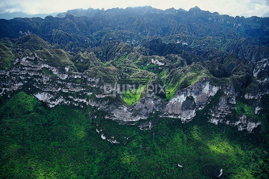The Sangkulirang region in East Kalimantan, Borneo, boasts a striking karst terrain. Solutional weathering of limestone has yielded a wonderland of pits, spires and steep escarpments.