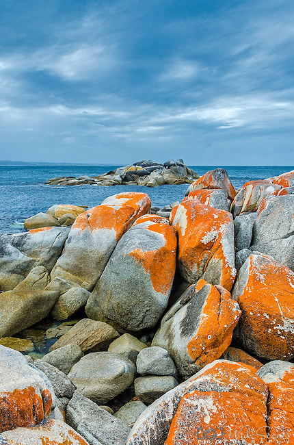 Colourful rock formations in Skeleton Bay in the Bay of Fires Conservation Area on the east coast of Tasmania in Australia.