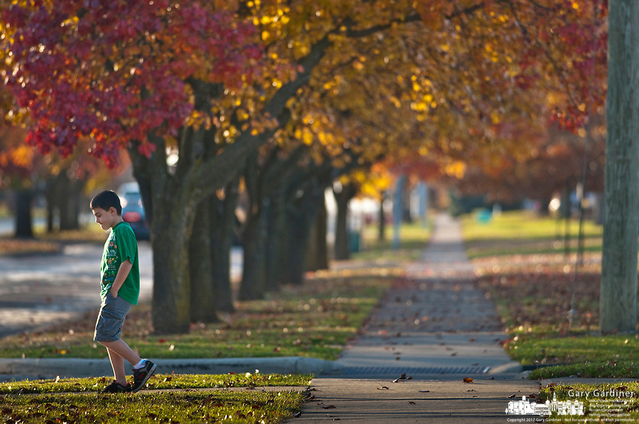A young boy returns home after failing to find a friend at a nearby park.