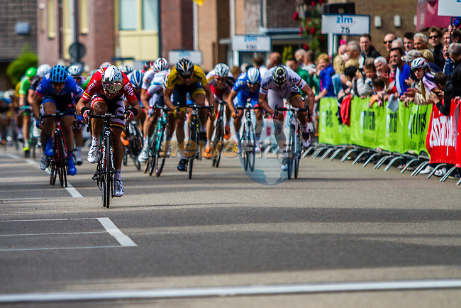 Gregory Henderson (NZL, LOT) sprinting to stage win, Stage 3 Buchten - Buchten, Ster ZLM Toer, Buchten, The Netherlands, 20th June 2014, Photo by Thomas van Bracht / Peloton Photos