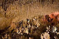 Europe/France/Aquitaine/24/Dordogne/Villars: Grotte de Villars -Plafond et stalactites de la Salle des peintures