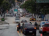 SAO BERNARDO DO CAMPO, SP, 17 Janeiro 2012 .Afonsina.  .  (FOTO: ADRIANO LIMA - NEWS FREE)