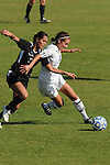 03 DEC 2011: Megan Brown (8) of Grand Valley State University and Gianna D'Errico (22) of the College of Saint Rose battle for the ball during the Division II Women's Soccer Championship held at the Ashton Brosnaham Soccer Complex in Pensacola, FL.  Saint Rose defeated Grand Valley State University 2-1 to win the national title.  Stephen Nowland/NCAA Photos
