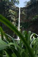 Waterfall in Monte Blanco, Veracruz. April 4, 2008