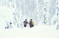70 cm. of fresh pow at Wildhorse Snowcat Skiing in West Kootenay  near Ymir, BC