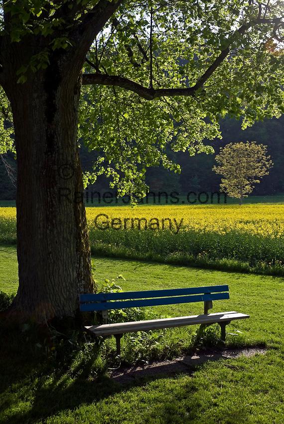 DEU, Deutschland, Bayern, Niederbayern, Naturpark Altmuehltal, ruhiges Plaetzchen unter einem Schatten spendenden Baum | DEU, Germany, Bavaria, Lower Bavaria, Natural Park Altmuehltal,