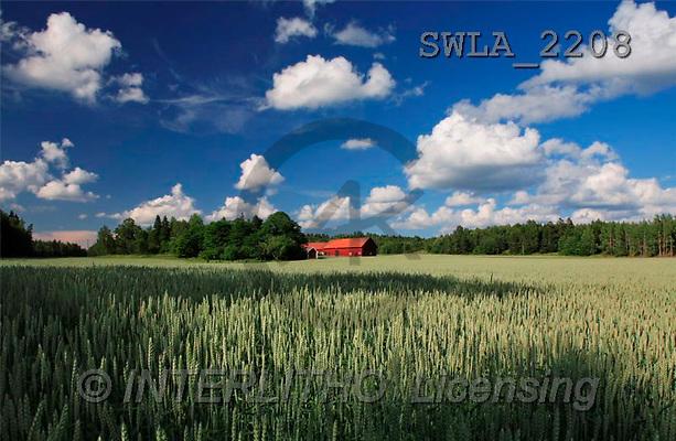 Carl, LANDSCAPES, photos(SWLA2208,#L#)