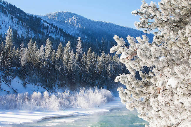 Frost covered trees and ice along the Blackfoot River on a sunny morning in January