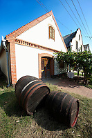 Wine cellars of Hajos (Hajós) Hungary