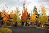USA, Oregon, Bend, the fall colors begin to cover the town of Bend, Oregon