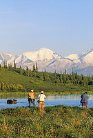 Tourists photograph bull moose wading in Wonder Lake, Denali National Park, Alaska