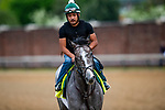 LOUISVILLE, KENTUCKY - MAY 01: Tacitus prepares for the Kentucky Derby at Churchill Downs in Louisville, Kentucky on May 01, 2019. Evers/Eclipse Sportswire/CSM