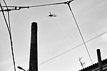 Gen&egrave;ve, le 21.11.2017<br /> Image des d&eacute;forestation et transports des arbres des rives du Rh&ocirc;ne avec un h&eacute;licopt&egrave;re &agrave; la Jonction<br /> Le Courrier / &copy; C&eacute;dric Vincensini