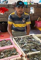 Bali, Indonesia.  Jimbaran Fish Market, Shrimp for Sale.