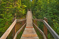 Wooden boardwalk leading from the parking lot through the boreal forest to Pisew Falls<br />