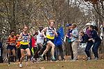 LOUISVILLE, KY - NOVEMBER 18: Tyler Day #429 of Northern Arizona University takes the lead during the Division I Men's Cross Country Championship is held at E.P. Tom Sawyer Park on November 18, 2017 in Louisville, Kentucky. (Photo by Tim Nwachukwu/NCAA Photos via Getty Images)