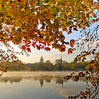 Oct. 11, 2012; Fall foliage on St. Joseph's Lake..Photo by Matt Cashore/University of Notre Dame