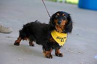 Newton, Rinker Racing mascot..Bay City River Roar, Bay City,Michigan USA.26-2821 June, 2009..©F. Peirce Williams 2009 USA.F.Peirce Williams.photography.ref: RAW (.NEF) File Available