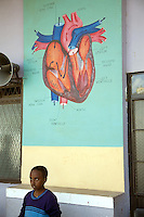 Eritrea. Maekel province. Asmara. Adulis junior school. Pupil. Drawing of a heart on a gren wall. Aorta, superior vena cava, right and left atriums, right and left ventricles, bicuspid and tricuspid valves. © 2006 Didier Ruef