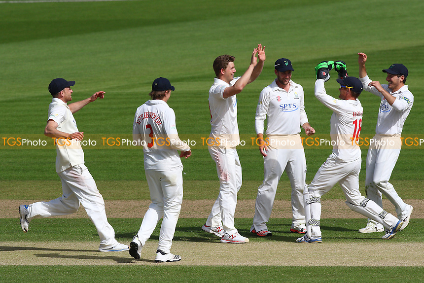 Craig Meschede of Glamorgan (C) celebrates taking the wicket of Adeel Malik - Glamorgan CCC vs Essex CCC - LV County Championship Division Two Cricket at the SWALEC Stadium, Sophia Gardens, Cardiff, Wales - 21/05/15 - MANDATORY CREDIT: TGSPHOTO - Self billing applies where appropriate - contact@tgsphoto.co.uk - NO UNPAID USE