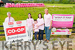 IN THE PINK: Anna, Conor, Deirdre and Donal Lyons on their farm at Knocknasna, Abbeyfeale last Thursday as they 'wrap it pink' for Breast Cancer Awareness.