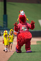 """Winston-Salem Dash mascot """"Bolt"""" leads a group of young children in """"The Chicken Dance"""" between innings of the Carolina League game against the Salem Red Sox at BB&T Ballpark on July 23, 2017 in Winston-Salem, North Carolina.  The Dash defeated the Red Sox 11-10 in 11 innings.  (Brian Westerholt/Four Seam Images)"""