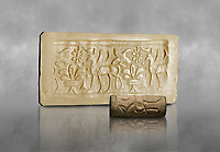 Hittite cylinder seal depicting a scene of animals, seal in foreground and impression standing behind.. Adana Archaeology Museum, Turkey. Against a grey art background