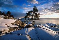 Snö och vinter vid klipporna vid havet på Gålö i Stockholms skärgård.