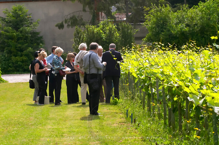 A group of visitors in the vineyard in the garden behind the house. Jean Herve Chiquet co-owner and co-winemaker showing the vines, Champagne Jacquesson in Dizy, Vallee de la Marne, Champagne, Marne, Ardennes, France, low light grainy grain