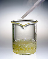 HYDROGEN PEROXIDE REACTS WITH POTASSIUM IODIDE (2 of 2)<br /> A Decomposition Reaction<br /> H2O2 reacting with KI(aq). H2O2 has a slow reaction rate and does not undergo significant decomposition. When the catalyst is added, the reaction rate increases dramatically and oxygen bubbles can be seen forming.
