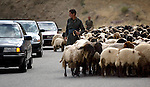 Shepherds in the mountainous Kurdish region of northern Iraq near the Iran/Iraq border share the road with cars as they move their herd to greener pasture in June, 2003.  (photo by Khampha Bouaphanh)