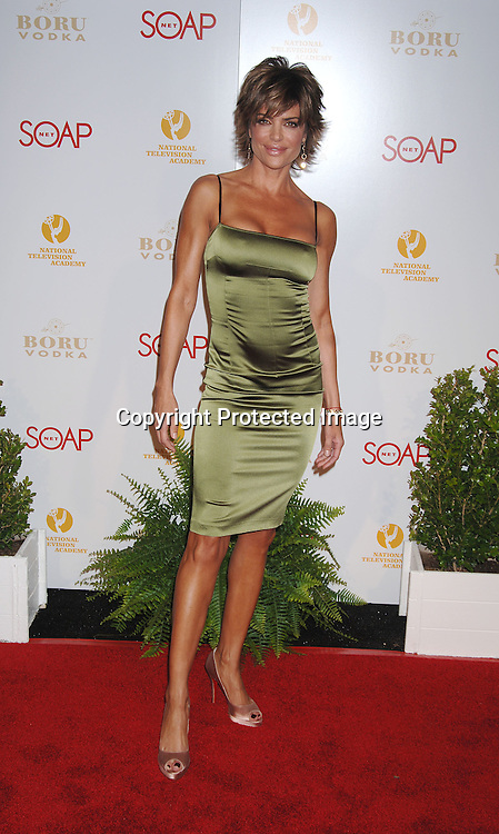 Lisa Rinna..at The SOAPnet and The National Academy Of Television Arts & Sciences Annual Daytime Emmy Awards Nominee Party on April 27, 2006 at The Hollywood Roosevelt Hotel. ..Robin Platzer, Twin Images