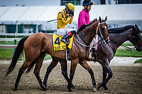 BALTIMORE, MD - MAY 19: Terra Promessa #4 (yellow hat), ridden by Jose Ortiz, during the post parade for the Allaire Dupont Distaff Stakes, in which he eventually wins on Black-Eyed Susan Day at Pimlico Race Course on May 19, 2017 in Baltimore, Maryland.(Photo by Douglas DeFelice/Eclipse Sportswire/Getty Images)