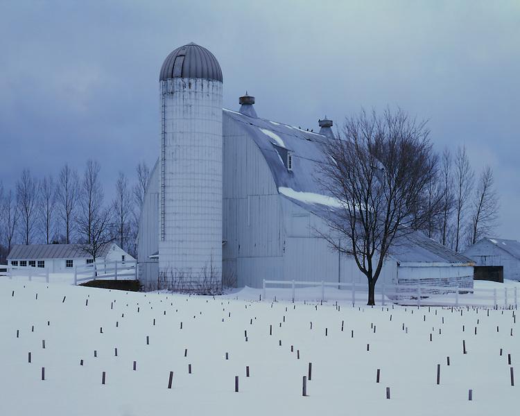 Winter scene on a farm near Traverse City; Leelanau County, MI