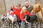 Animal Rescue Animal Heaven are appealing for everyone to support the forthcoming Comedy festival  which will help the local animal welfare organisation save abandoned animals. .L-R Mary O'Shea, Seamus Fogarty, Suzanne Gibbons and Ted Cronin.