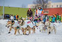 Kim Franklin's team rounds the corner at Cordova street during the 2016 Iditarod Ceremonial Start in downtown Anchorage.  Photo by James R. Evans