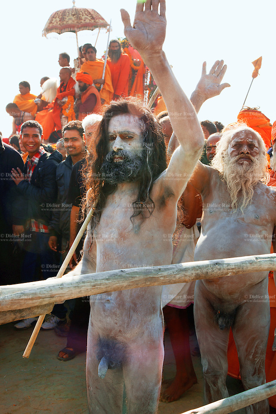 "India. Uttar Pradesh state. Allahabad. Maha Kumbh Mela. Royal bath on Mauni Amavasya Snan (Dark moon). The ritual ""Royal Bath"" is timed to match an auspicious planetary alignment, when believers say spiritual energy flows to earth. Naga (naked) Sadhus celebrate their joy after taking a dip in Sangam and worship the river Ganges. The Kumbh Mela, believed to be the largest religious gathering is held every 12 years on the banks of the 'Sangam'- the confluence of the holy rivers Ganga, Yamuna and the mythical Saraswati. In 2013, it is estimated that nearly 80 million devotees took a bath in the water of the holy river Ganges. The belief is that bathing and taking a holy dip will wash and free one from all the past sins, get salvation and paves the way for Moksha (meaning liberation from the cycle of Life, Death and Rebirth). Bathing in the holy waters of Ganga is believed to be most auspicious at the time of Kumbh Mela, because the water is charged with positive healing effects and enhanced with electromagnetic radiations of the Sun, Moon and Jupiter. In Hinduism, Sadhu (good; good man, holy man) denotes an ascetic, wandering monk. Sadhus are sanyasi, or renunciates, who have left behind all material attachments. They are renouncers who have chosen to live a life apart from or on the edges of society in order to focus on their own spiritual practice. The significance of nakedness is that they will not have any worldly ties to material belongings, even something as simple as clothes. A Sadhu is usually referred to as Baba by common people. The Maha (great) Kumbh Mela, which comes after 12 Purna Kumbh Mela, or 144 years, is always held at Allahabad. Uttar Pradesh (abbreviated U.P.) is a state located in northern India. 10.02.13 © 2013 Didier Ruef"