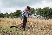Leusden -  De Stichting Behoud Oude Werktuigen organiseert de jaarlijkse Oogstdag op landgoed Den Treek. Rogge snijden met een zicht