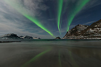 Northern lights - aurora borealis reflect on Haukland beach, Vestvågøy, Lofoten Islands, Norway