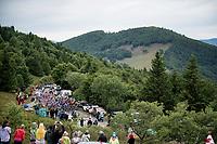 peloton up Le Grand Ballon<br /> <br /> Stage 6: Mulhouse to La Planche des Belles Filles (157km)<br /> 106th Tour de France 2019 (2.UWT)<br /> <br /> ©kramon