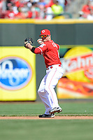 Cincinnati Reds shortstop Zack Cozart #2 during a game against the Miami Marlins at Great American Ball Park on April 20, 2013 in Cincinnati, Ohio.  Cincinnati defeated Miami 3-2 in 13 innings.  (Mike Janes/Four Seam Images)