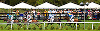 A group of spectators watch the horses during the Queen's Cup Steeplechase in Mineral Springs, NC.