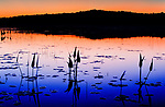 Early evening glow on English Lake in Northern Wisconsin.