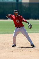 Adodys Canelo - Arizona Diamondbacks - 2009 spring training.Photo by:  Bill Mitchell/Four Seam Images