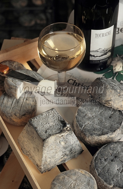 Europe/France/Centre/41/Loir-et-Cher/Fougères-sur-Bièvre: Fromages de chèvre de C Egreteau, Selles sur Cher, pyramide avec un sauvignon de P Buisse
