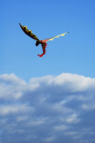 Kite flying at Jones Beach, New York