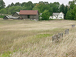 A Farmhouse, Barn And Field In Central Michigan, USA : Low Res File - 8X10 To 11X14 Or Smaller, Larger If Viewed From A Distance