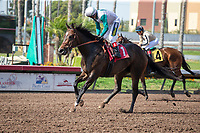 CERRITOS, CA  JULY 24:#1 Phantom Proton, ridden Rafael Bejarano,looks back towards #4 Marley's Freedom, ridden by Drayden Van Dyke, to offer congratulations after winning the Great Lady M Stakes (Grade ll), on July 7, 2018, at Los Alamitos Race Course in Cerritos, CA. (Photo by Casey Phillips/Eclipse Sportswire/Getty Images)