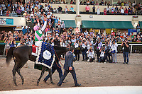 HALLANDALE BEACH, FL - JANUARY 28: Arrogate with jockey Mike Smith up celebrates after cruising to victory in the Pegasus World Cup Day at Gulfstream Park. (Photo by Arron Haggart/Eclipse Sportswire/Getty Images